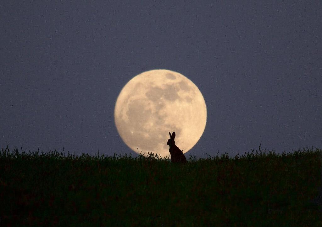 Ngày rằm là ngày Vọng: mặt trăng đối xứng với mặt trời