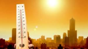 Kinh nghiệm chuyển nhà, chuyển văn phòng mùa nắng nóng